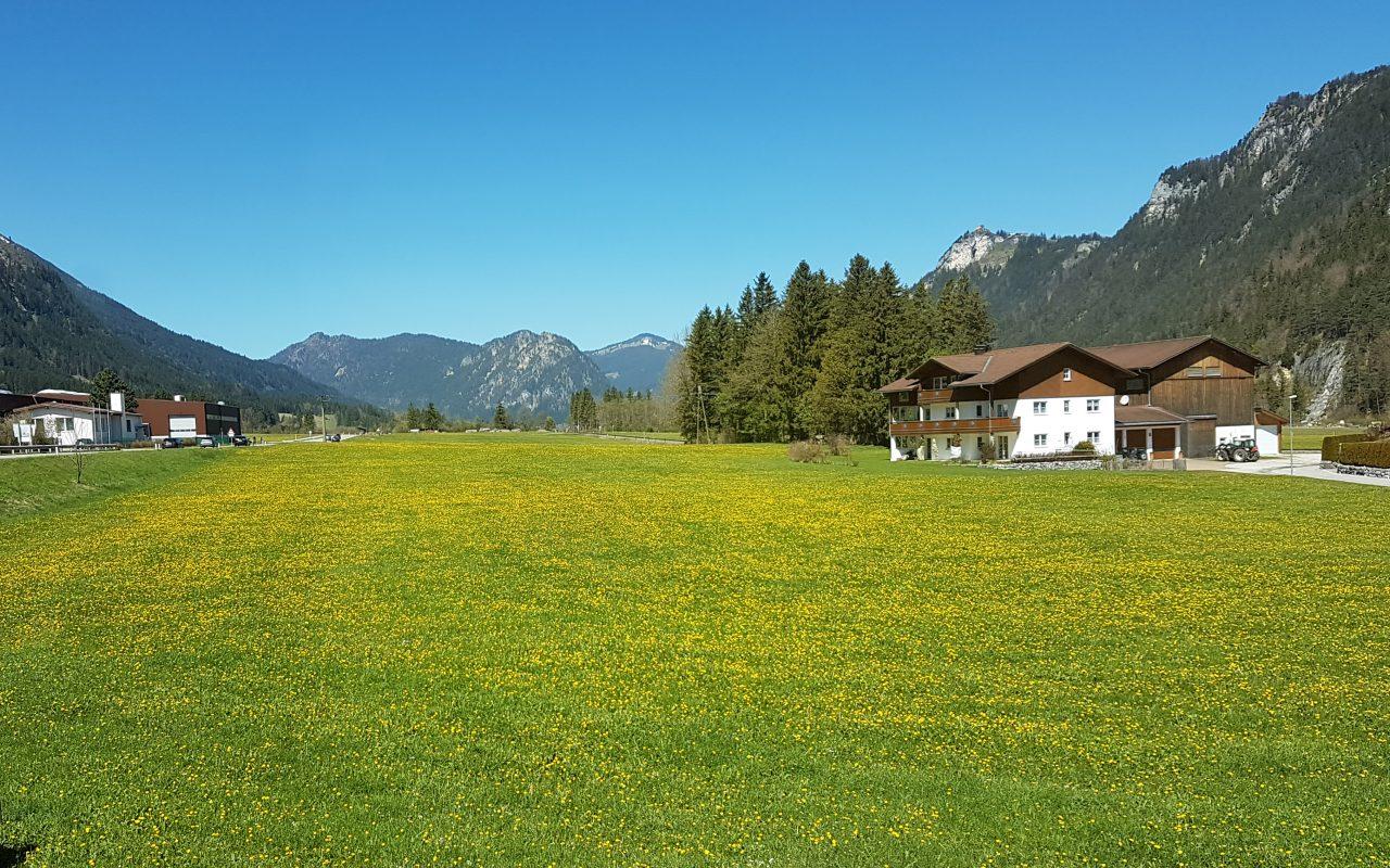 Alpenchalet Vils Tirol Chalet Edelweiss Blick Richtung Westen